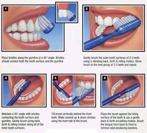 Teeth Brushing-how to brush